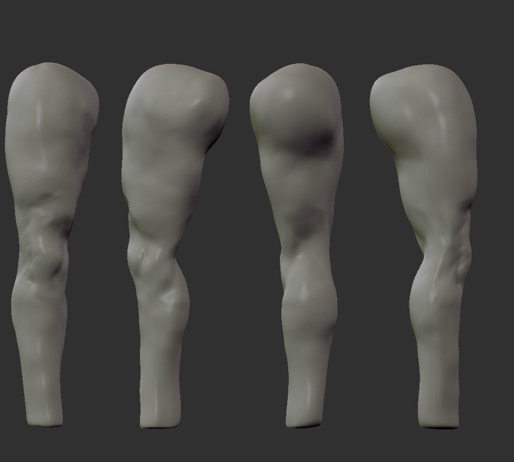 アナトミー 脚